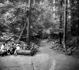 Schmitz Park, 1910 Courtesy Seattle Municipal Archives